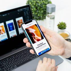 Mobile Apps Development Services | Beeanerd