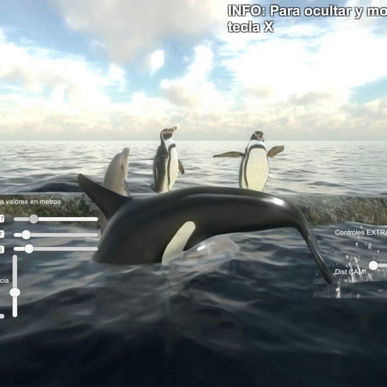 whale-3d-motion